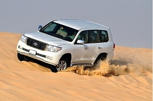 Morning Safari (Dune Drive) with Hotel Stay
