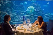Dinner at Atlantis
